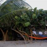 shaded hammocks